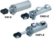 CK1-Z